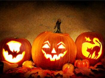 Die besten WhatsApp-Sprüche zu Halloween