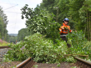 Baum im Gleis auf einer Bahnstrecke