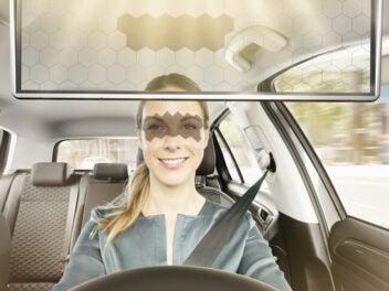 Bosch-Sonnenblende mit Fahrerin