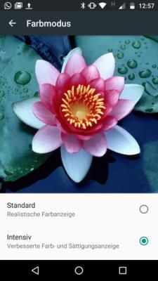 Display-Einstellungen Lenovo Moto Z
