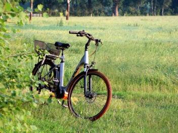 Ein blaues E-Bike steht neben einem Busch auf einer grünen Wiese.