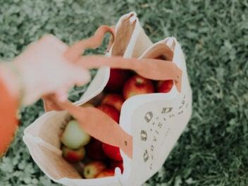 Äpfel in Einkaufstasche