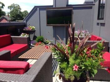 Ein Fernseher steht auf einer großen Terrasse, im Vordergrund sind Sitzgelegenheiten und Blumen zu sehen