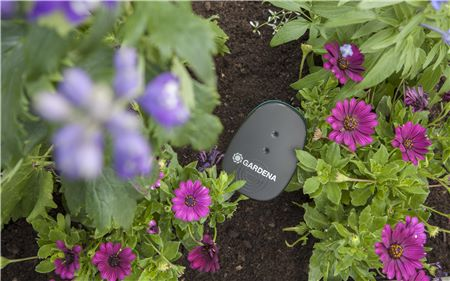 Gardena Smart Sensor im Beet