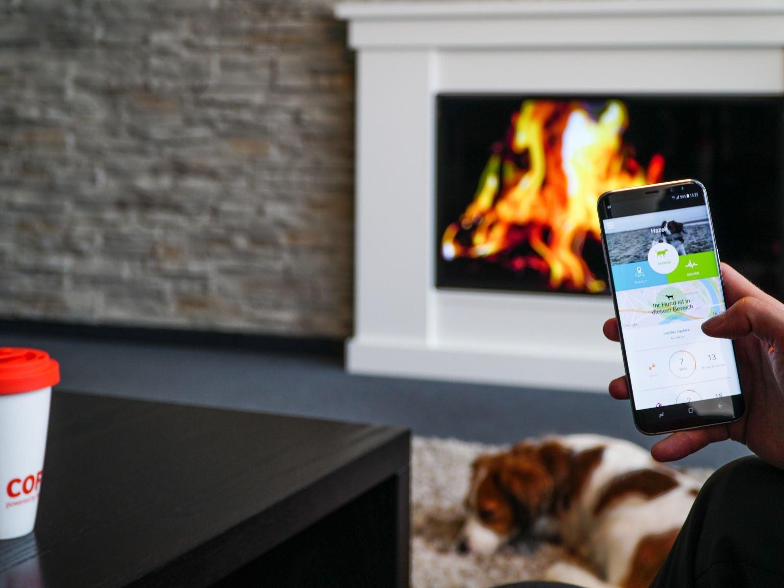 Smartphone im Wohnzimmer