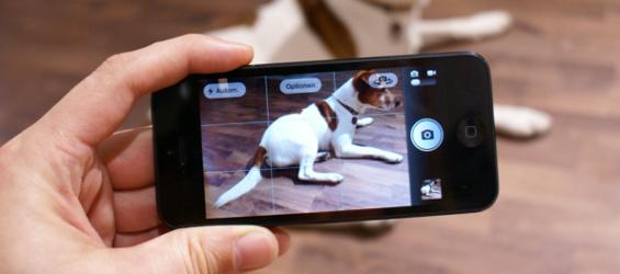 Kamera des iPhone 5