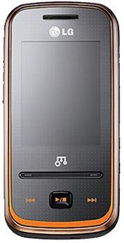 LG GM310 Datenblatt - Foto des LG GM310