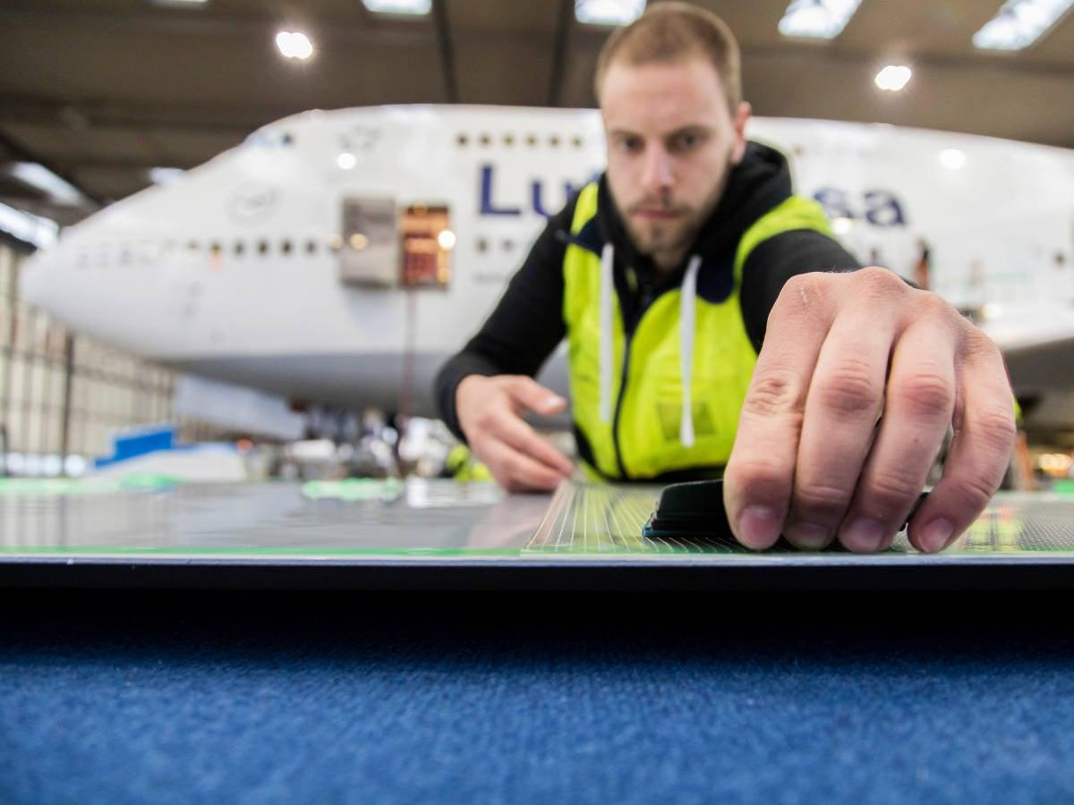 Lufthansa kurios: Haie machen dem Kranich Konkurrenz