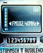 Motorola W375: Radio
