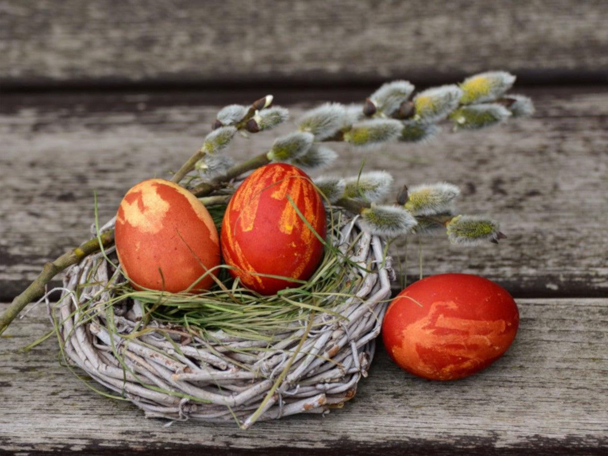 Osternetst mit Eiern