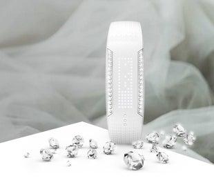 Polar Loop Crystal: Pressebilder