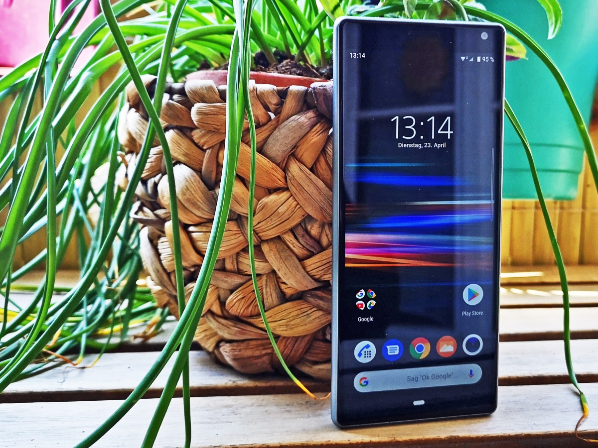 Das Sony Xperia 10 vor einer Pflanze stehend.