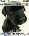 Samsung SGH-D600 - Hintergrund