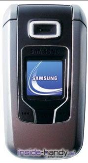 Samsung SGH-Z310