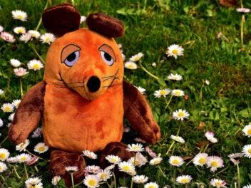 Die Maus als Plüschtier auf einer Blumenwiese