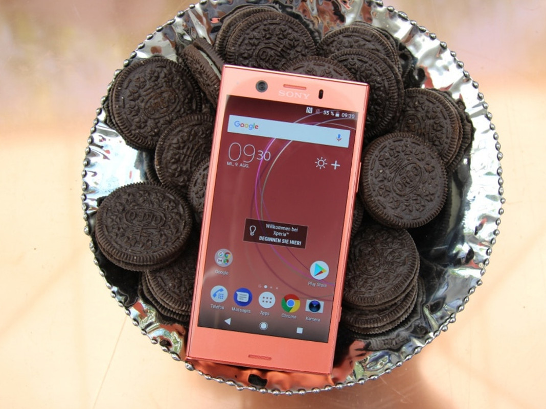 Sony Xperia XZ1 Compact in Roségold
