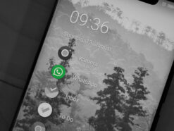 WhatsApp-Icon auf Smartphone Homescreen