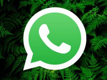 WhatsApp bekommt neue Funktion: So findest du sie